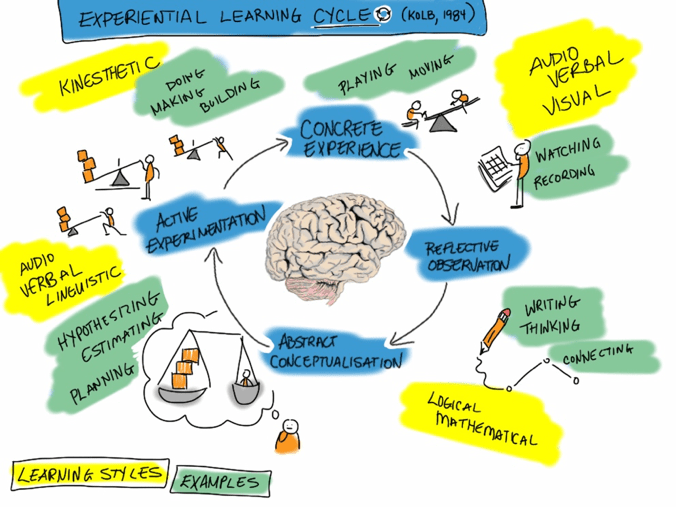 Picture showing experiential learning cycle. There is a picture of a brain in the middle, and a stick figure acting out each stage of the cycle.